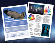 Office Brochure Design